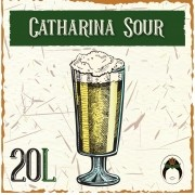Kit Receita Cerveja Artesanal Catharina Sour Maracujá 20L