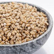 Malte Viking Wheat (Trigo) Embalagem 1Kg
