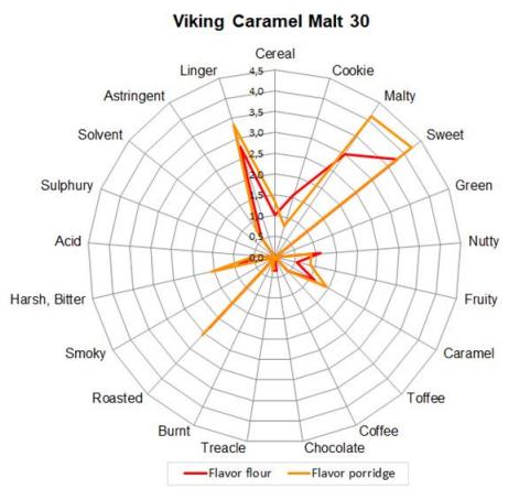 Malte Viking Caramel 30 Embalagem 500g  - Maria Cervejeira