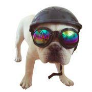 Capacete para Cachorro Preto  - Tamanho M