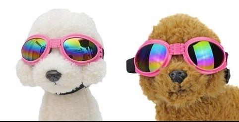 Óculos De Sol Para Cães Com Proteção Uv - Cor Rosa