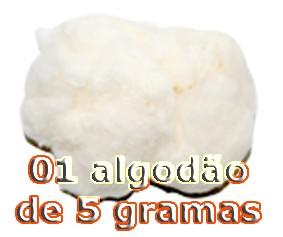 01 ALGODÃO FLASH 5g (BRANCO)