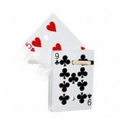 baralho chinese rising deck , carta na varinha chinesa