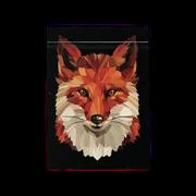 Baralho Fox Playing Cards b+