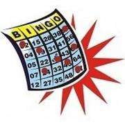 Previsão do Bingo D+