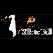 ELECTRIC SILK TO BALL - QUICK SPEED VERMELHO