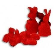 Familia de Coelhos ESPUMA - sponge Multiplying rabbit