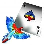 Infinity Playing Cards by D3PSY - Baralho com Papagaio B+