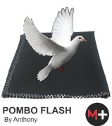 Pombo Flash By Anthony G+