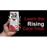 RISING CARD - CARTA QUE PULA SOSINHA