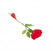 Rosa Jato De Água - Squirt Rose. R+