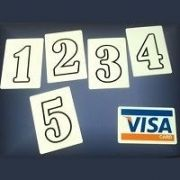 VISA CARD PREDICTION