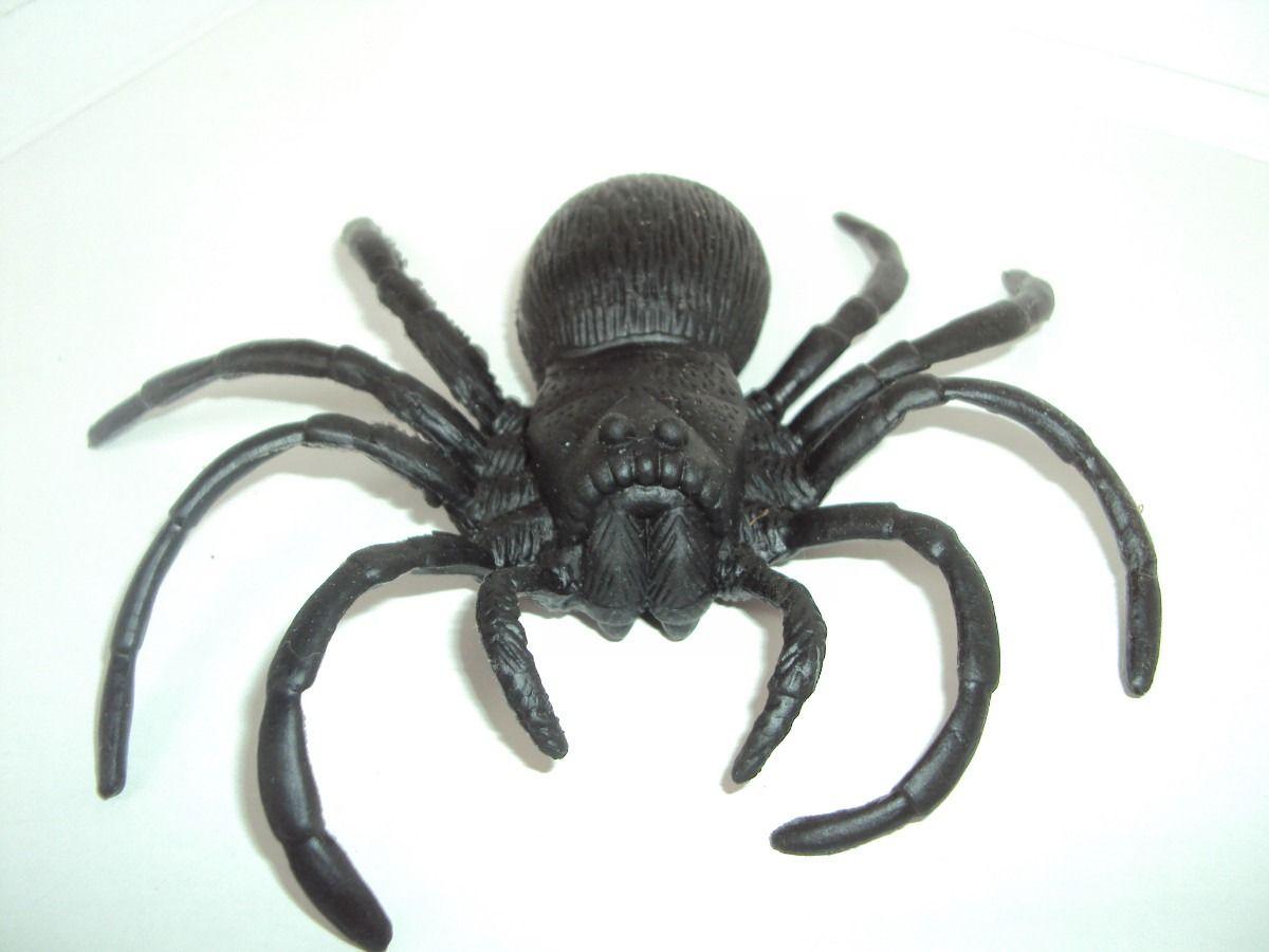 Aranha de Borracha Grande