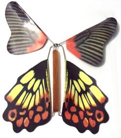 Borboleta mágica - The Magic Butterfly