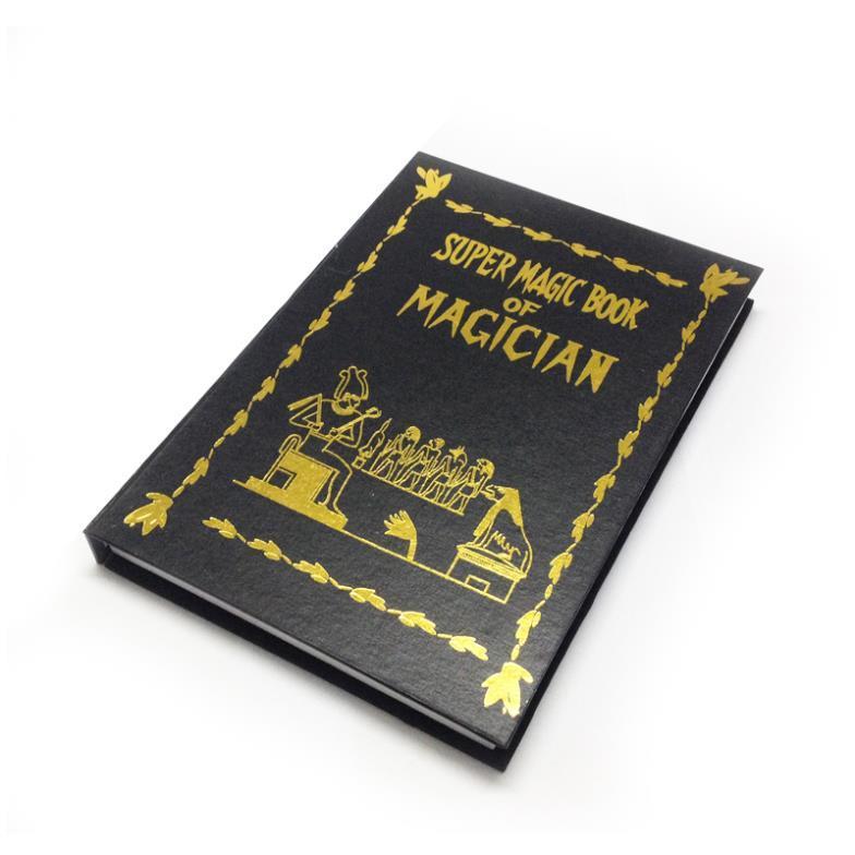 Livro Aparição Pombo - Dove book B+