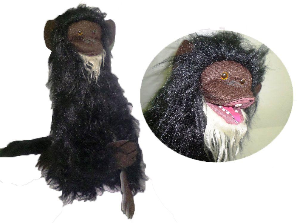 Macaco Ventríloquo -  R+