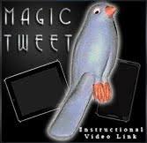 Aparição do passarinho canário Azul  látex - Magic Tweet R+
