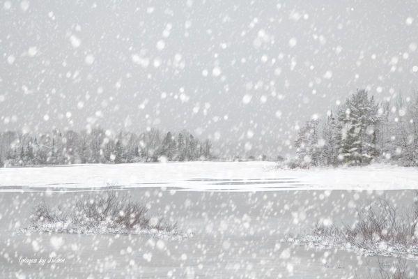 Neve Chinesa Branca B+
