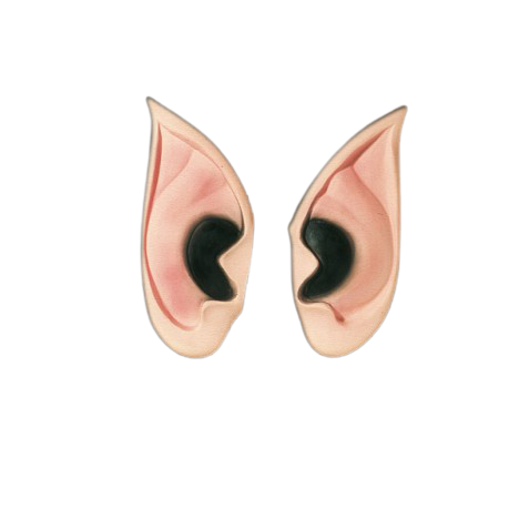 Orelha de Vampiro Spook b+
