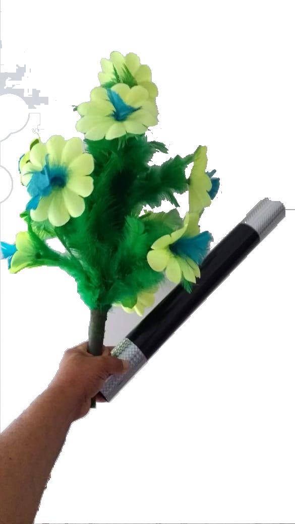 Pluma Em Plumeiro - Flores G+