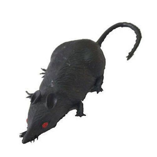 Rato Cinza De Borracha. F+