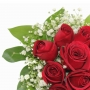 Buquê de 12 Rosas com Gipso