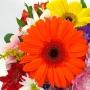 Flores Simpáticas