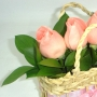 Rosas Mamãe Bebê