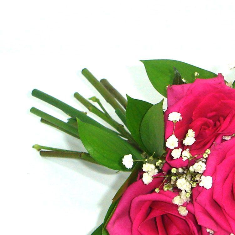 Buquê Rosas Conquista Pink