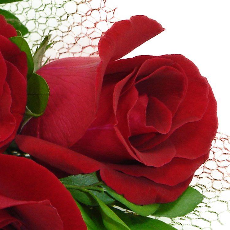 Mini Buque Rosas Dourado