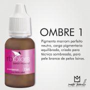 PIGMENTO RB KOLLORS - OMBRE 1