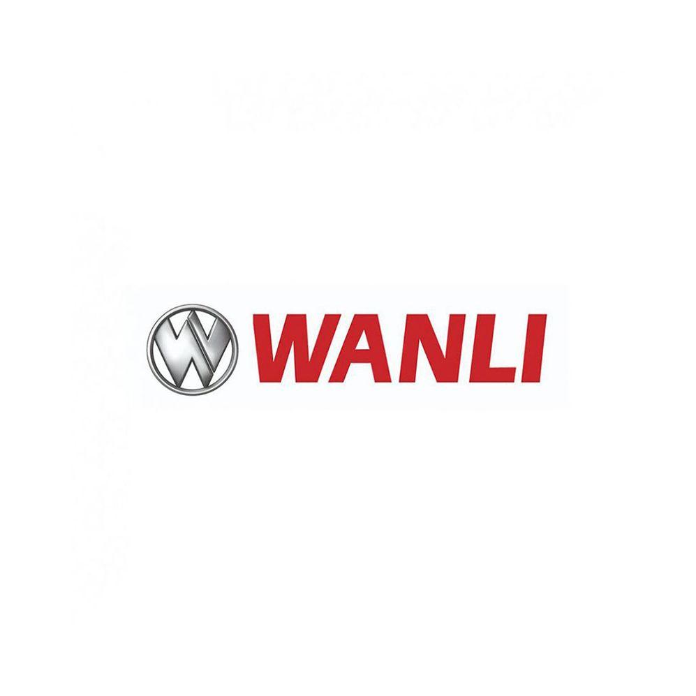 Pneu Wanli Aro 17 205/50R17 SA-302 93W