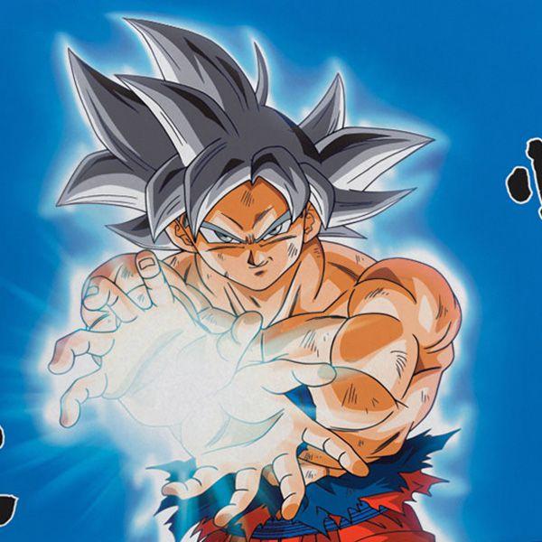 Fronha Avulsa Dragon Ball - 1 Peça - FR0977