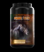 Power Nutri Cavalo Casco e Pelagem