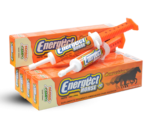 Energect Horse Competition
