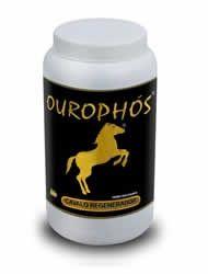 Ourophos Cavalo Regenerador