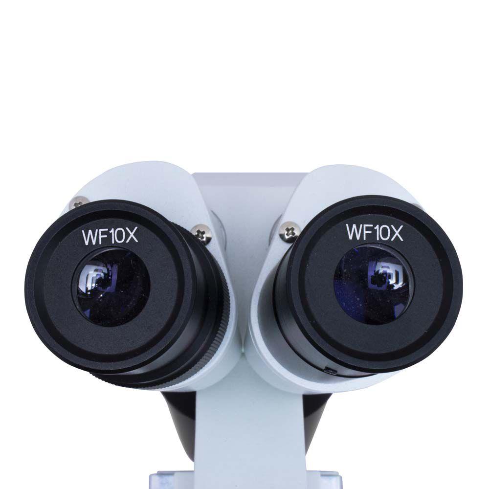 Estereomicroscópio Binocular Basic 80 X. Bivolt