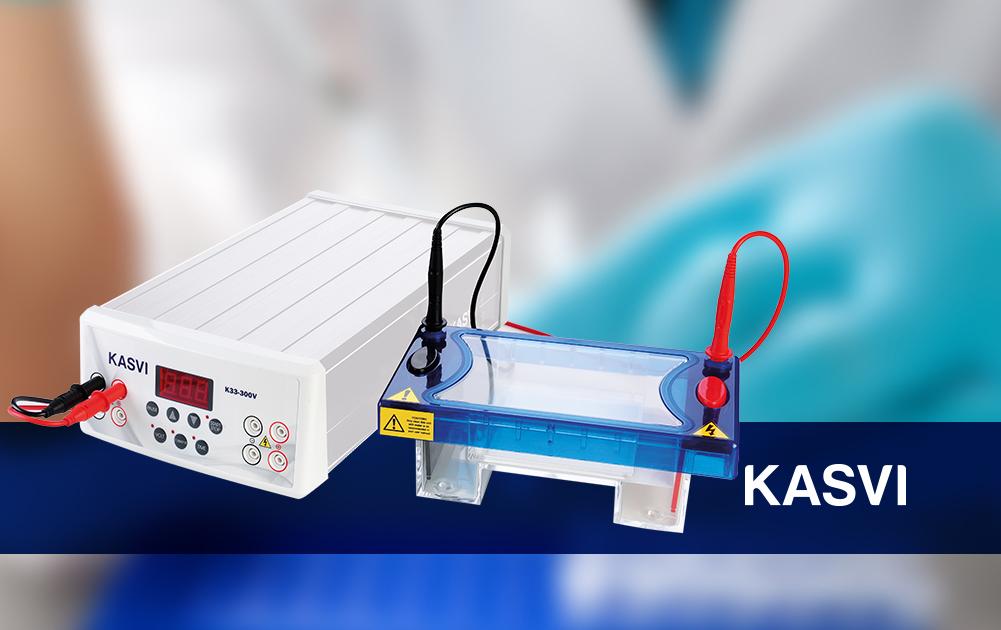 Princípios da Técnica de Eletroforese