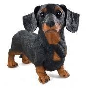 Cachorro Basset Preto