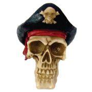 Caveira Crânio Pirata Capitão Barbanegra.