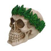 Cranio Caveira Cannabis