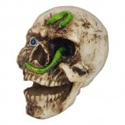 Crânio Caveira Cobra Em Resina Decorativo Halloween