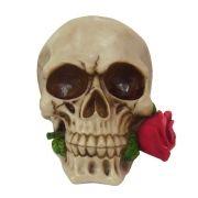 Crânio caveira com rosa na boca