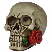 Crânio Caveira Com Rosa Na Boca Vermelha Decorativo