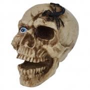 Crânio Caveira Escorpião decorativo resina grande