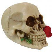 Crânio Caveira rosa na boca grande.