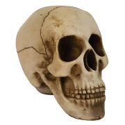 Crânio Caveira tamanho médio.