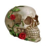 Crânio Caveira trepadeira Rosas decoração.