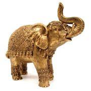 Elefante indiano grande cor ouro.