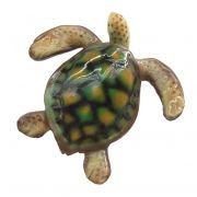 Família Tartaruga marinha